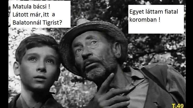 Tigris1..jpg