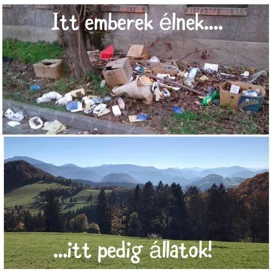 Emberek_álatok.jpg