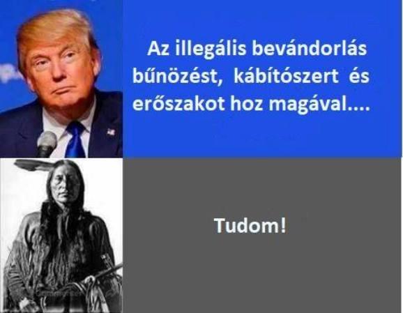 Illeglis.jpg