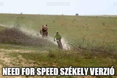 13964-need-for-speed-szekely-verzio.jpg