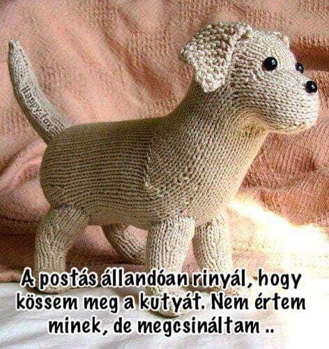 Kutya.jpg