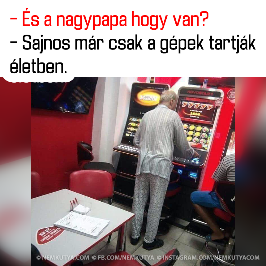 gpektartjk.png