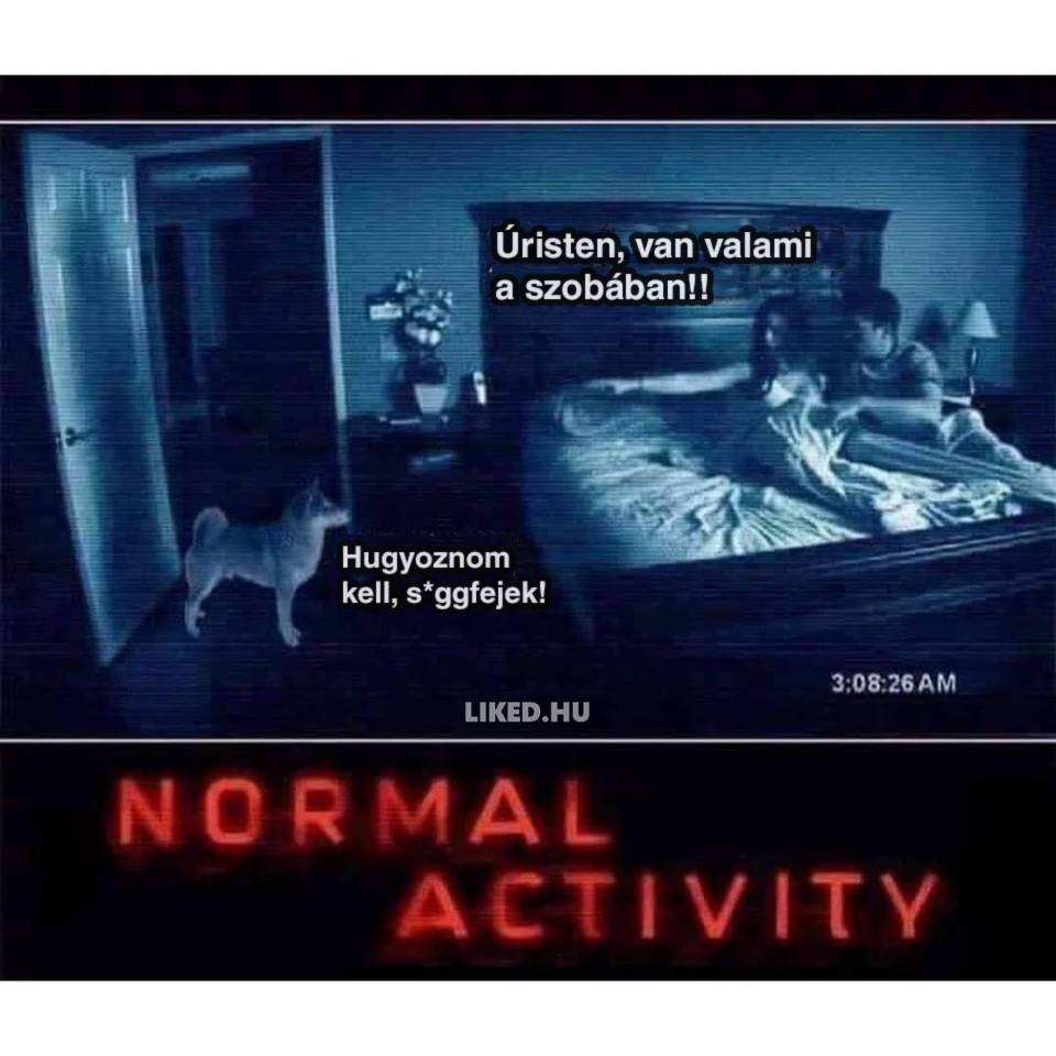 normalactivity.jpg