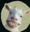 KeCsKe_a_PUDING profilkép